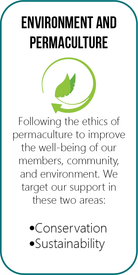 Environment and Permaculture